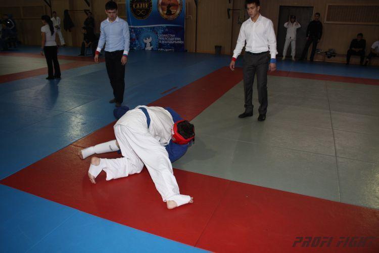 Алматы лачин 2011 год626