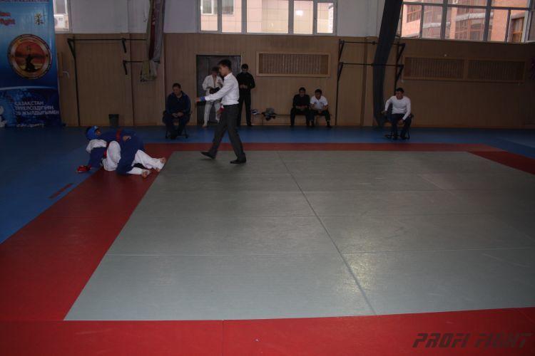 Алматы лачин 2011 год625